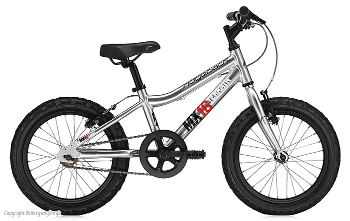 Srebrny rower dla dziecka Ridgeback MX16