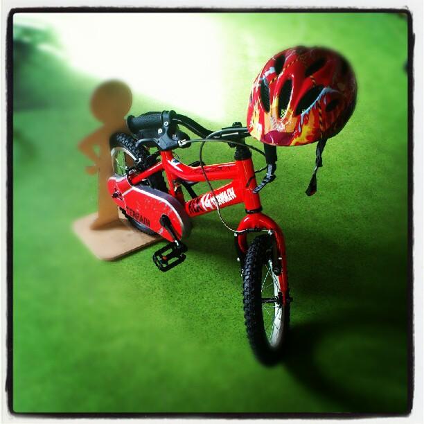 Rower Ridgeback MX14 czerwony i kask Alpina Gamma również czerwony