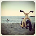 AktywnySmyk lubi… Rowerek biegowy Early Rider Lite