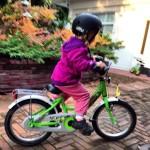 AktywnySmyk lubi… Zielony rowerek Puky ZL 16 Alu